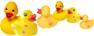 duck-2.jpg