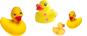 duck-3.jpg